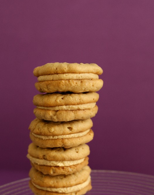 Girl Scout Do-Si-Dos Oatmeal Peanut Butter Cookie Recipe | Cookie ...