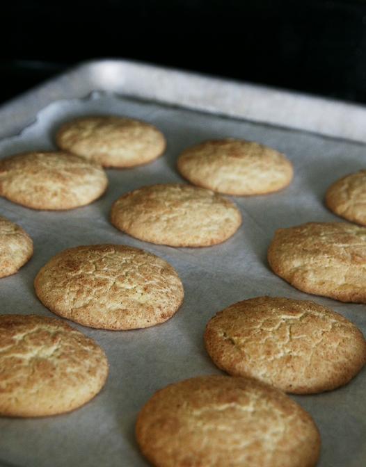 bakedsnickerdoodles