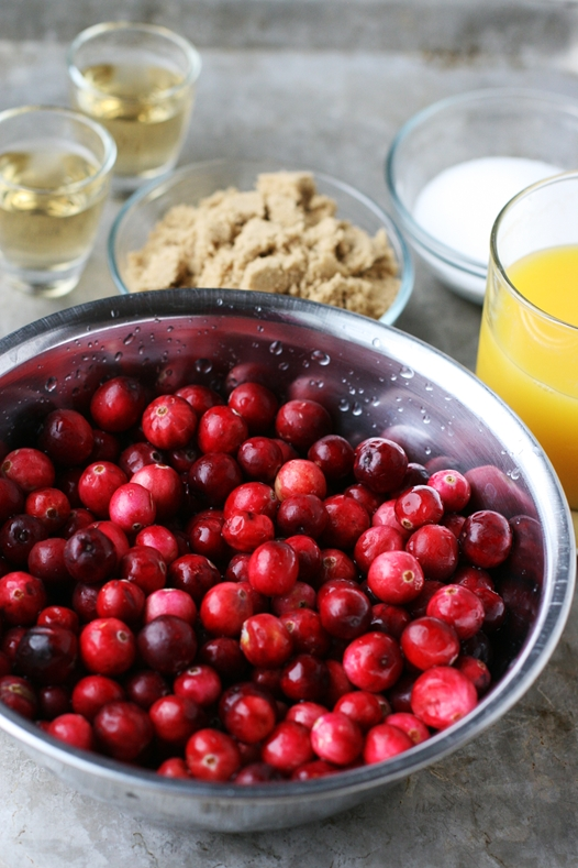 cranberryelements {Simple and Amazing} Cranberry Sauce Recipe