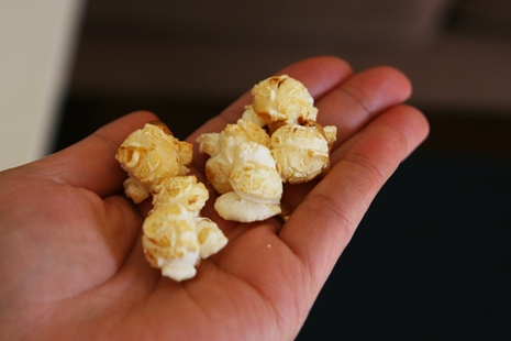 mushroompopcorn {My Favorite Fair Food} Kettle Corn