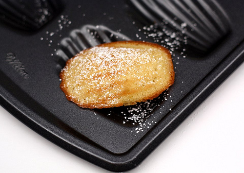 Classic Madeleines | Savory Sweet Life - Easy Recipes from an Everyday ...
