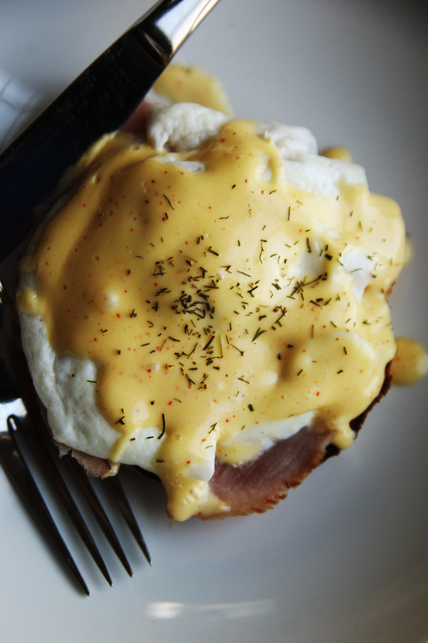 Easy Blender Hollandaise Sauce Recipe | Easy Recipes, Tips, Ideas, and ...