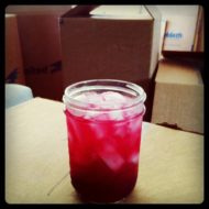 Blueberry Rum Spritzer